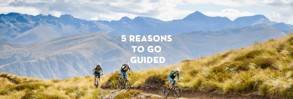 l5 reasons to use local guides