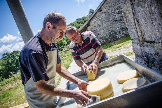 Shepherds making cheese in the mountains of Slovenia on our mountain bike tour Slovenia