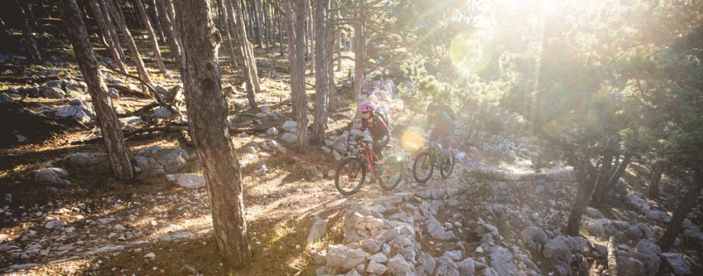 Riding through the forest and morning sun, part of our Croatia mountain bike tour.