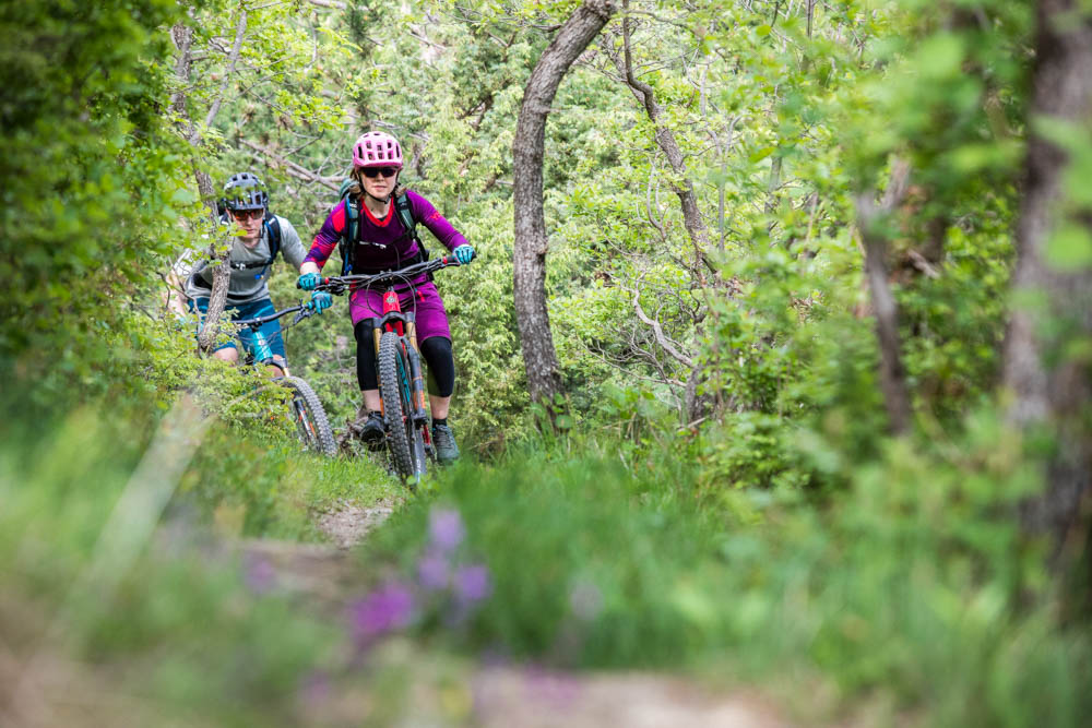 Mountain bikers in the forest, mountain bike tour Croatia