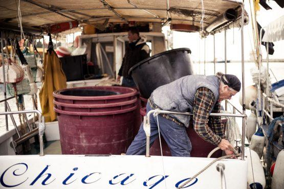 Fishermen in Rovinj, mountain bike tour Croatia
