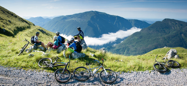 Organise a group tour - Julian Alp views