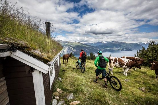 Mountain bike tour Norway - time to walk
