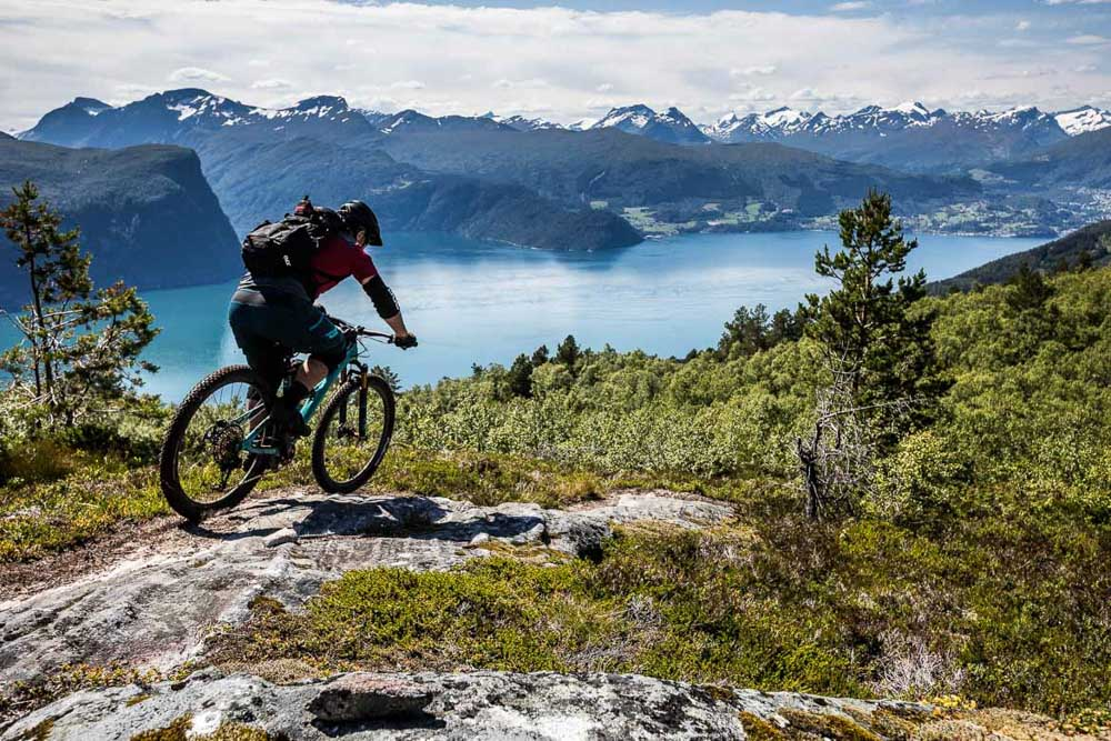 Mountain bike tour Norway - forest riding