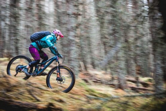Descending through pine forest, mountain bike tour Cairngorms