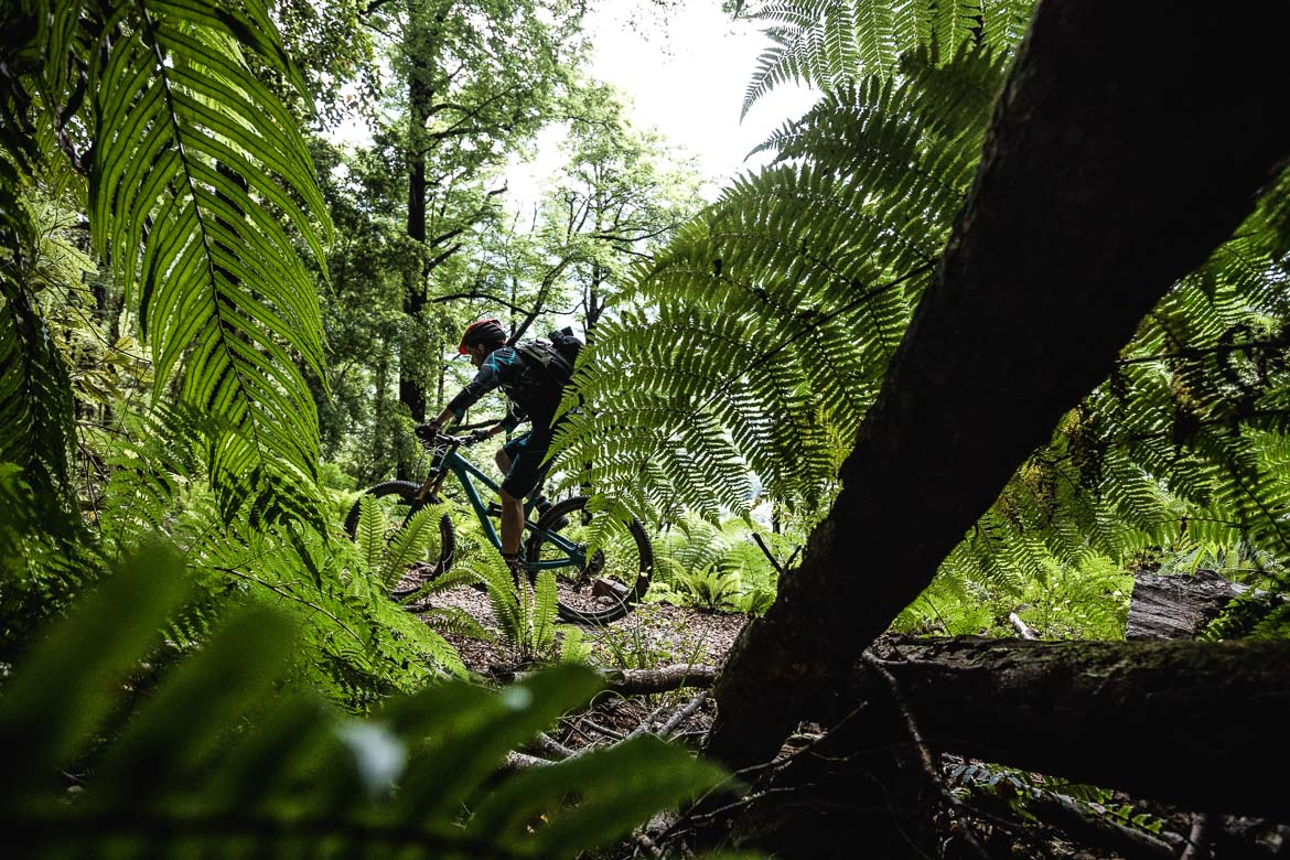 Mountain biker riding the Old Ghost Road during the International Yeti Tribe New Zealand mountain bike tour.