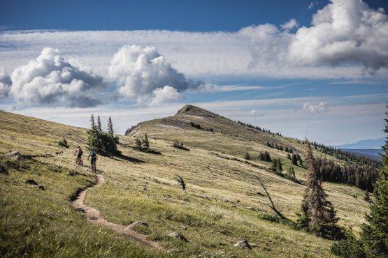 Riding monarch crest trail during our mountain bike tour Colorado.