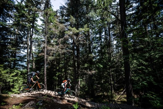 Northshore mountain biking, just look ahead