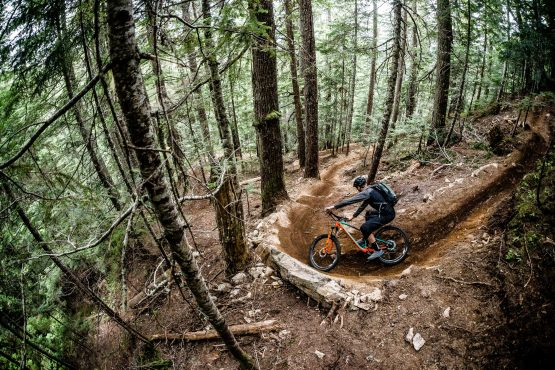 Berms are well built in BC, Canada. Scotty is enjoying them anyway!