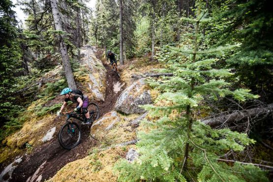 Loamy lines on our mountain bike tour Yukon