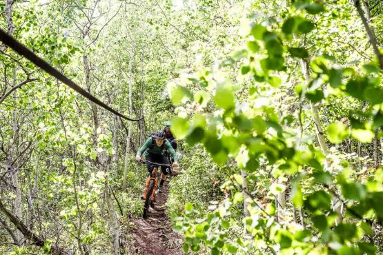 Following old mining trails on the mountain bike tour Yukon
