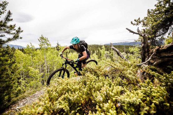 Mountain bike tour Yukon