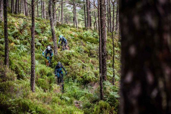 Forest trails on the coast-to-coast MTB adventure
