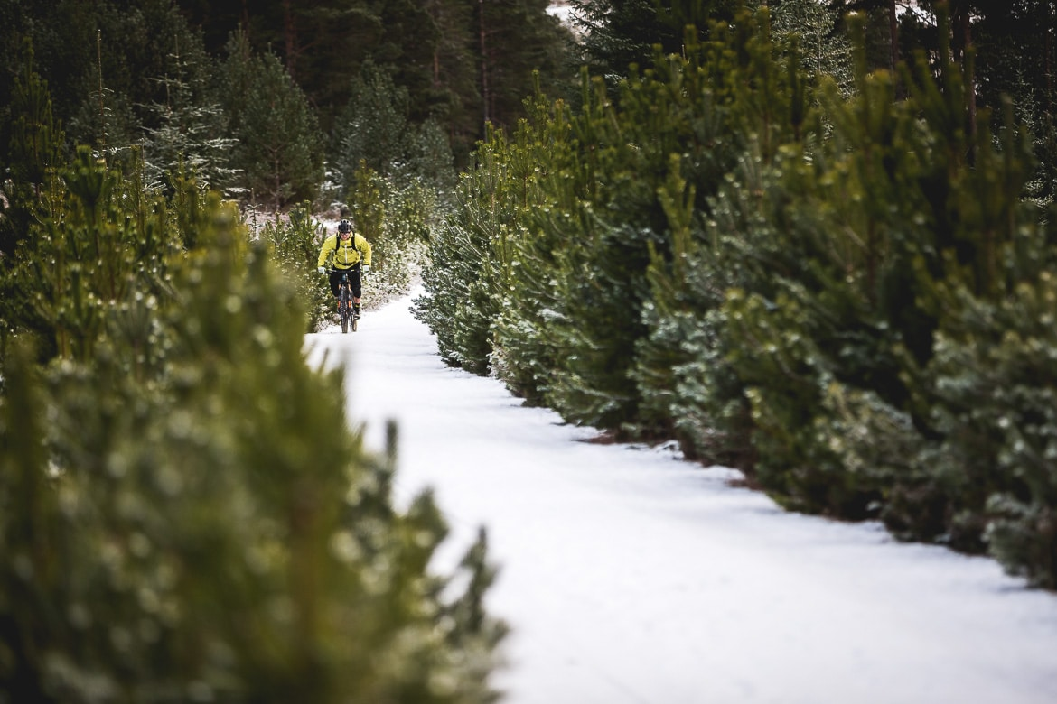 Climbing up a snowy forest road with local Aviemore mountain bike guide Chris Gibbs