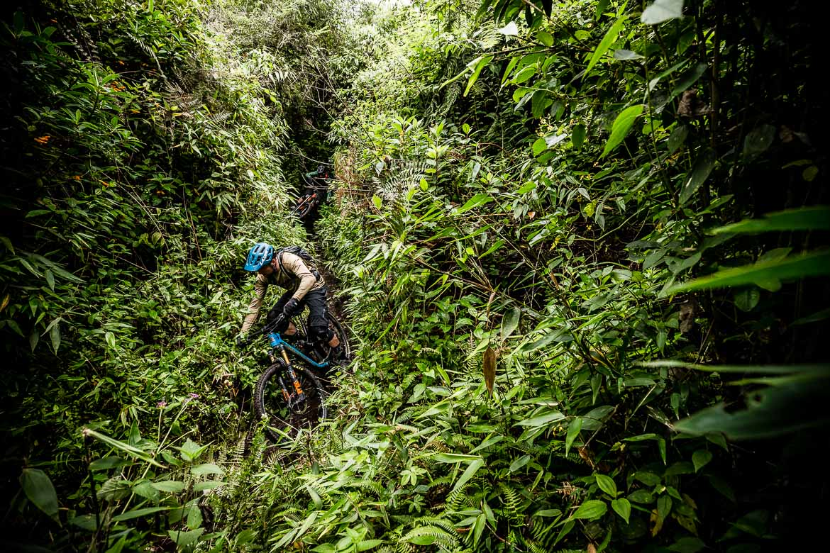 Jungle singletrack on our Mountain biking Ecuador vacation