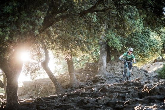 Changing terrain on a Mountain bike tour Spain