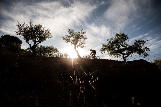 Weaving through the almond trees on a Mountain bike tour Spain