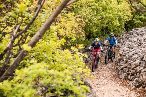 E-MTB tour of Croatia forest paths
