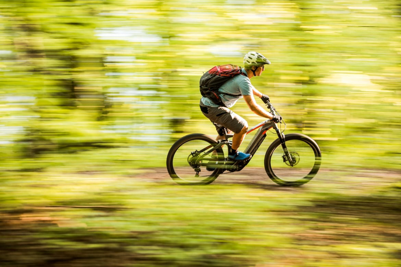 E-MTB tour of Slovenia woodland pan