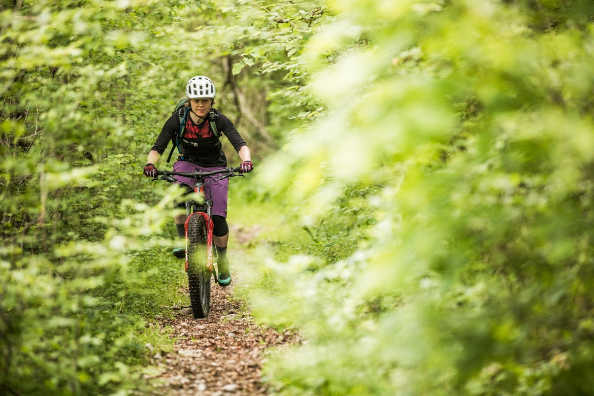 Through the lush green forests in a E-MTB tour of Slovenia