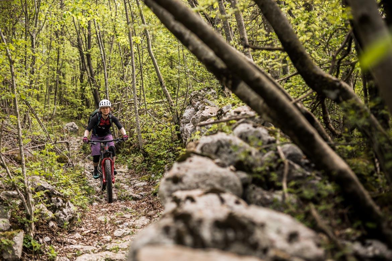E-MTB tour of Slovenia woodland trails