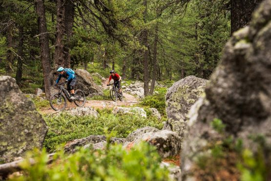 Amazing trails in the pine forests on a E-MTB Tour In Switzerland
