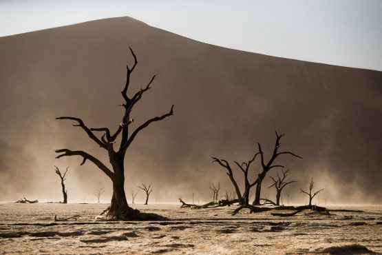 Visiting Deadvlei on a mountain bike safari tour Namibia