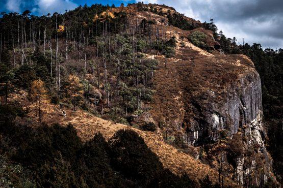Mountain bike tour Bhutan forest trails