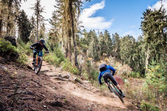 Mountain bike tour Bhutan perfect turns