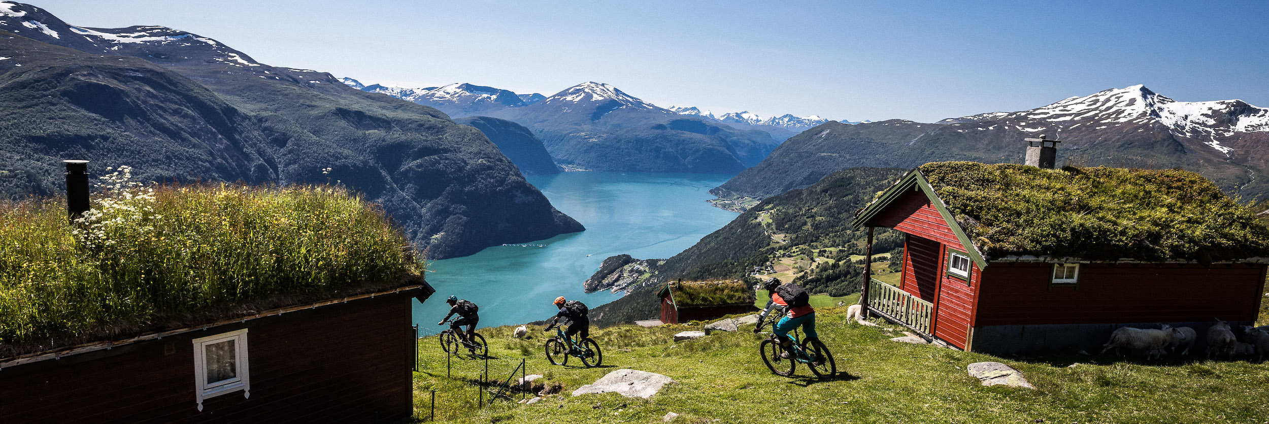 Descending to the fjords in Norway, mountain bike tours