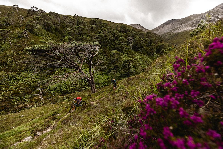 Tracy Moseley, Manon Carpenter, Scottish Highlands, heather