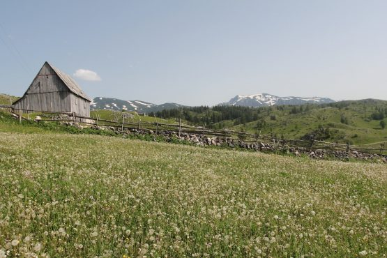The shepherds huts around Kolasin, E-MTB Tour Montenegro