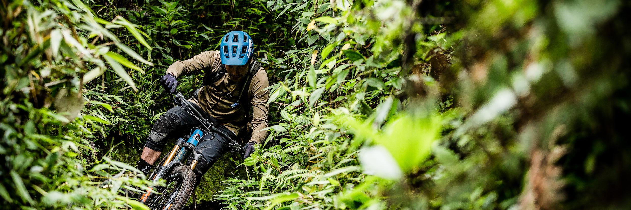 Mountain bike tours, riding through jungle in Ecuador